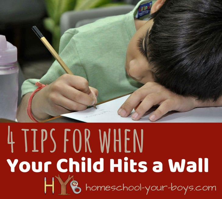 4 Tips for When Your Child Hits a Wall