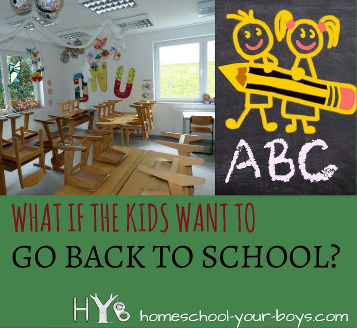 Are your kids asking to stop homeschooling? If so, click through to discover some positive strategies for helping them to see the value of homeschooling. | stop homeschooling | kids hate homeschooling | go back to school |