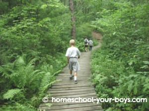 cub scouts on a hike