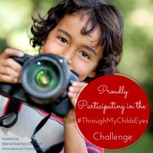 Through My Childs Eyes Challenge