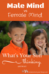 Did you know that men and women think differently? Find out how to know if you're dealing with a heart issue or a male mind vs female mind issue. Click through to find out what he's thinking!   male mind   male brain   what your son is thinking   boy mom  