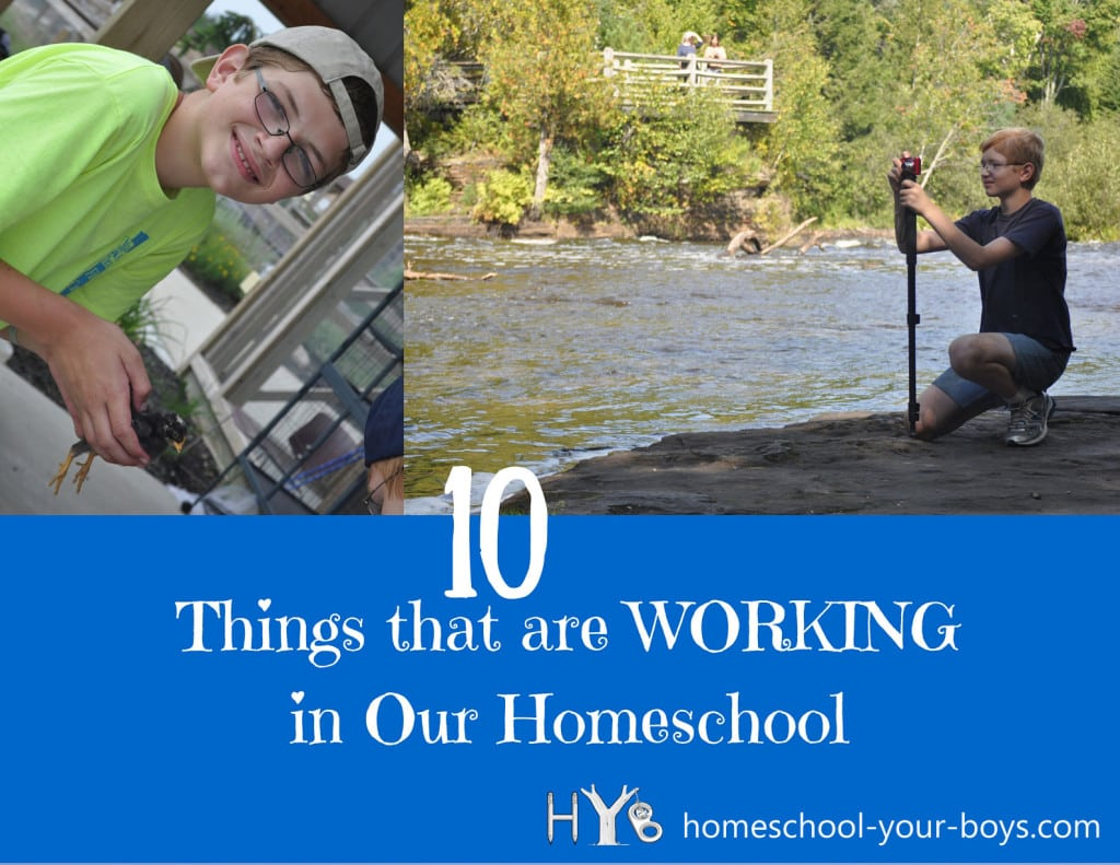 10 Things that are Working in our Homeschool
