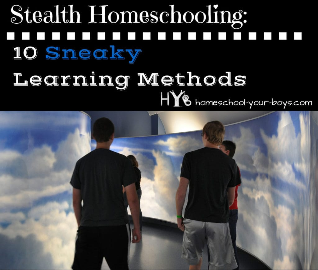 Stealth Homeschooling: 10 Sneaky Learning Methods