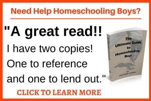 help homeschooling boys
