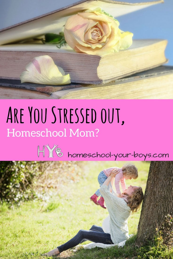 Are You Stressed Out, Homeschool Mom?