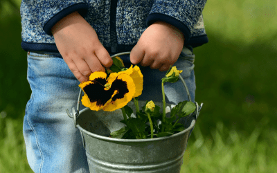 5 Ways to Homeschool Successfully in the Spring